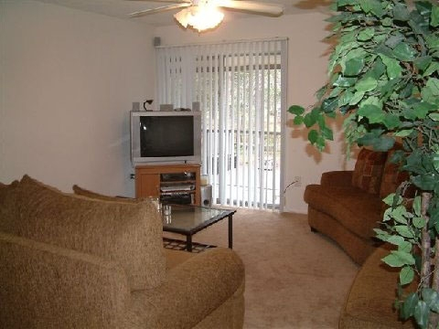 Country Village Apartments Living Room 2