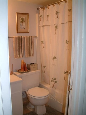 Country Village Apartments Bathroom 1