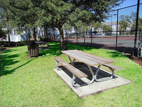 Gainesville Place Apartments Picnic Table